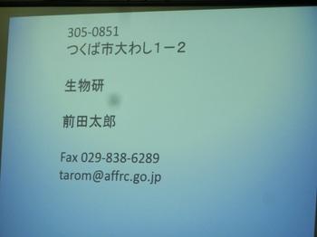 CIMG1168.JPG